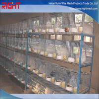 Cage Used for Rabbit, Pet Rabbit Cage Wholesale Alibaba