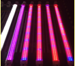 Growing led light for plant growth ,9W/13W/18W/22W,T8 led tube light