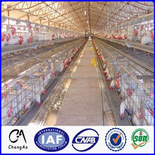 Low carbon steel wire 3 tiers 120 birds chicken layer cage price