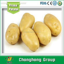 [HOT] chinese fresh potato suppliers/chinese purple sweet potato