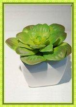 artificial mini plant with small white pot