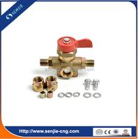 auto fuel system lpg gas filling valve
