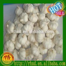 GAP Certified Chinese Fresh White Garlic