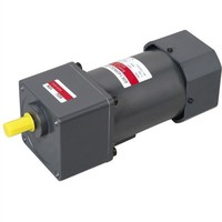 6w small variable speed electric motor