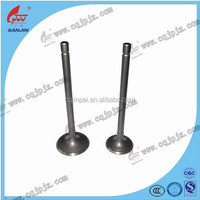 Hot Sale Inlet & Outlet Engine Valves For JP0002 Motorcycle High Quality