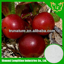 Natural fruit extracts100%pure bearberry leaf extract ursolic acid with factory price
