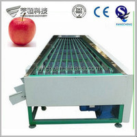 Big Output 1-3T/H Automatic Fruit Grader/Fruit Grading Machine
