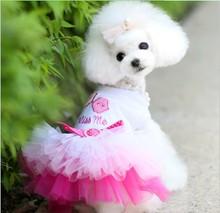 Fashion lovely lace dog girl dress