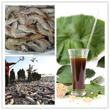 Feed additives soya lecithin series for poultry ,animal ,fish