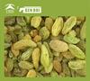 Raisin green raisin in dried fruit green raisin in dried fruit