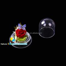 FOUSEN(FLOWER2) Nature& Art preserved flower and butterfly decor acryl