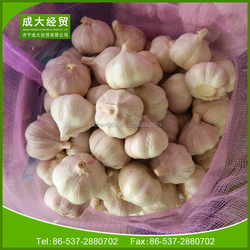 Chinese cheap garlic price in 2014 from China