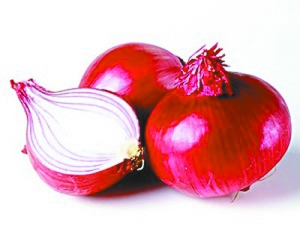 Free Sample Best Selling Products Onion Skin Extract