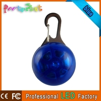 Circular LED lighting pendant for dog/key chain