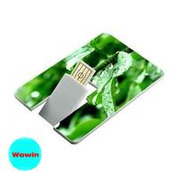 Custom-made logo Swivel Plastic Card USB Flash Drive