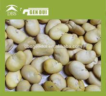 bean skin peeling Peeled broad beans Yunnan broad bean