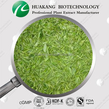 Top Quality Organic Green Tea Extract