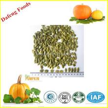 hot sale shine skin pumpkin kernels grade AAA