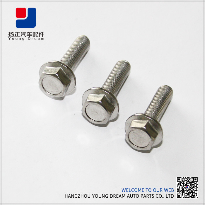Aolly Nylok Hex Flange Bolt 10.9 Wheel Bolt For Gearbox