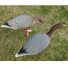 lure baits,a good tackle for goose hunting decoys,pink foot goose hunting decoys