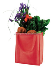 2015 Hot Sell Non Woven Shopping Bag Tote Used in Supermarket