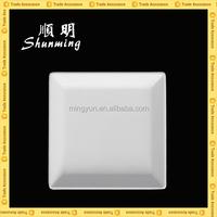 Reusable plastic melamine plates