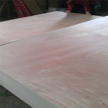 plywood with bintangor face whole poplar core