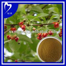 100% Natural fructus schisandrae P.E.