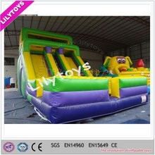 Giant Hippo Inflatable Water Slide, Inflatable Water Slide Supplier
