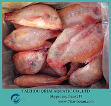 FROZEN RED TILAPIA FISH WHOLE ROUND