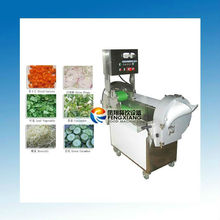 FC-301 fruit and vegetable processing unit