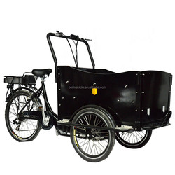 pedal assisted family three wheel electric tricycle cargo bike