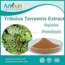 Tribulus Terrestris Extract 40% Saponins Powder/Saponins 40%