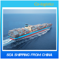 Professional MSC Ocean Freight to Russia Service