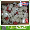 Pure White garlic,from China Okeya