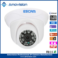 Amovision Camera D500 Support Onvif H.264 CMOS P2P IR camera security