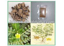 high quality morinda officinalis root extract/radix morindae officinalis
