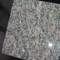 2015 Popular granite floor tiles 60x60 G383 ash grey granite