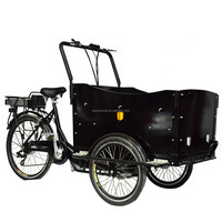 Electric pedal assisted China three wheel motor tricycle