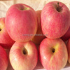 Royal gala apple from China with high quality early mature