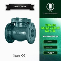 dn 150 cast iron swing check valve