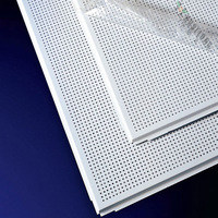 lightweight perforated metal ceiling building material
