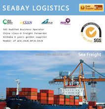 Professional international sea cargo freight service