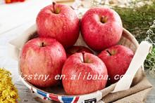 Trade Assurance Fresh Fuji Apple