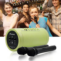 Top class outdoor speaker/colorful Home Theatre with two microphones for goldstar led tv