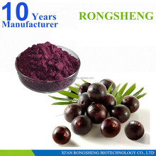 GMP Factory Organic Blueberry Extract Powder