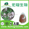 Alfalfa extracto / polvo / de Alfalfa semilla / la Alfalfa venta