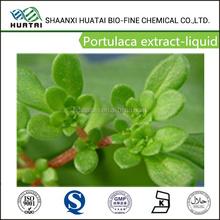 Cosmetic Ingredients 1%-5% liquid Portulaca oleracea extract