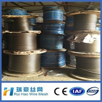 stainless steel thin wire rope/galvanized steel wire rope 12mm