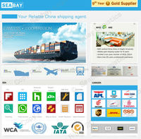 Reliable international freight forwarder china to usa